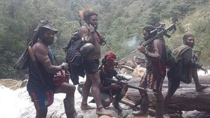 Teror KKB Papua Makin Beringas, Tanpa Bertanya Langsung Tembak Guru SD Hingga Tewas