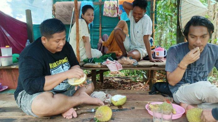 Asyiknya menikmati buah durian di Wisata Buah Pulau Burung Kabupaten Tanahbumbu.