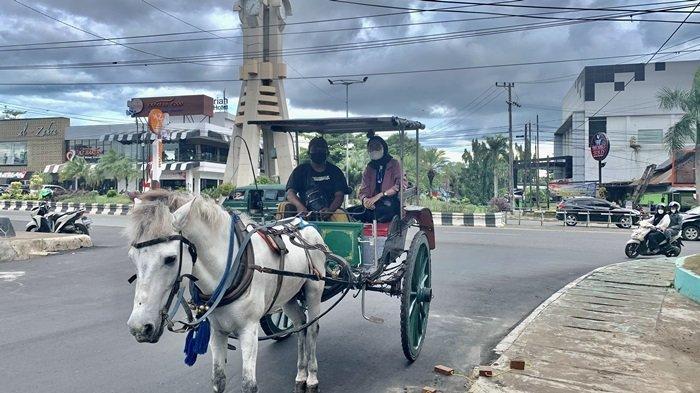 Naik Delman di Taman Van der Pijl Banjarbaru