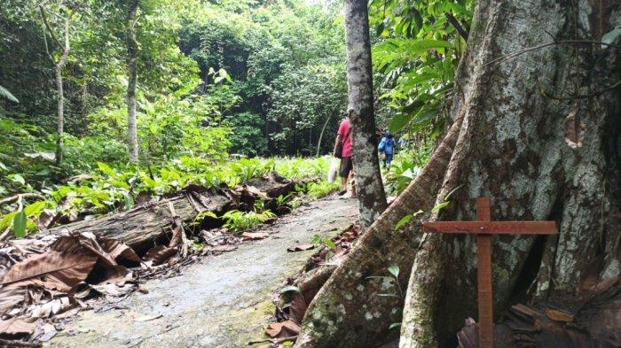 Ada Plang Nama Untuk Setiap Pohon di Trek Menuju Air Terjun Lano