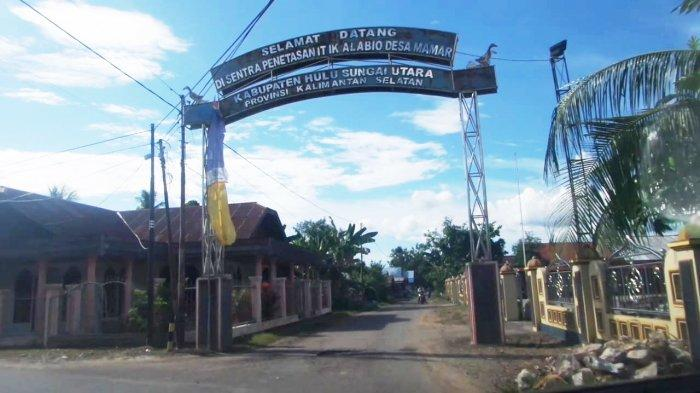 Menelusuri Penetas Telur Itik Alabio di Desa Damar Kabupaten Hulu Sungai Utara
