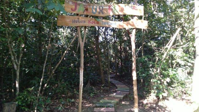 Tanaman Buah Khas Kalimantan yang Langka Dapat Dilihat di Hutan Kota Tanjung Persada