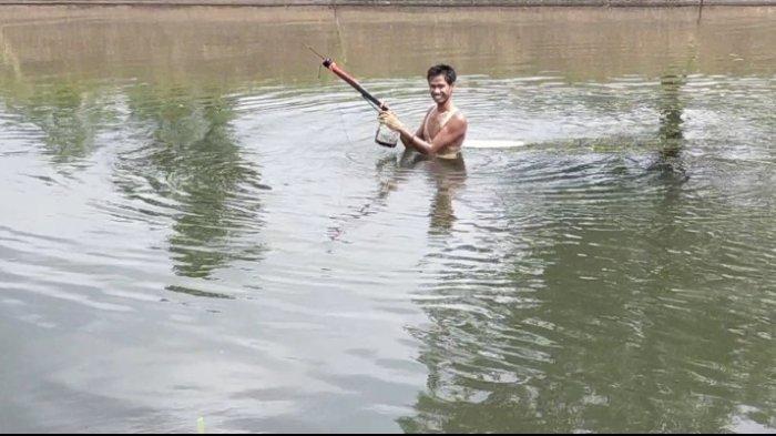 Wisata Kuliner Kalsel Lesehan Tambak Ikan Bincau Martapura, Mancing Ikan atau Nonton Pemburu Ikan