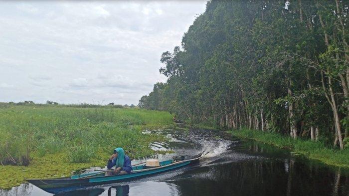 Viral Saat Pandemi Covid-19, Tempat Pemancingan Ini Jadi Lokasi Foto Kece