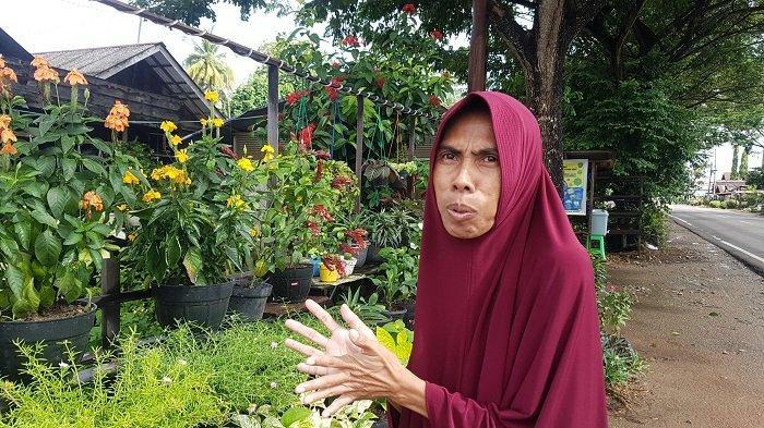 Desa Purut Sentra Pembibitan Bunga Hias di Kabupaten Tapin