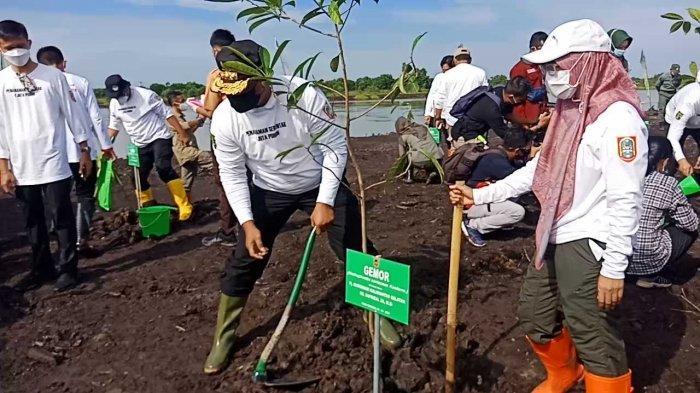 Embung Lokudat Wisata Kalsel di Kota Banjarbaru, Spot Mancing Asyik di Guntung Payung Dekat Bandara - penanaman-pohon-di-jalur-rth-embung-lokudat-destinasi-wisata-kalsel-di-kota-banjarbaru.jpg