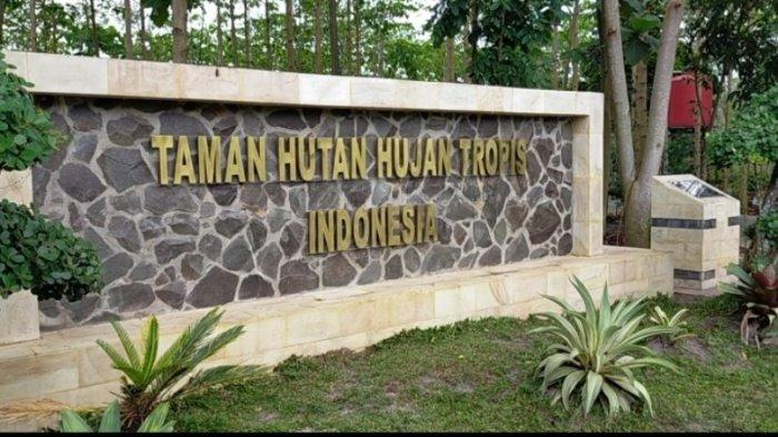 Taman Hutan Hujan Tropis Indonesia di Area Perkantoran Pemprov Kalsel, Sejuk Segar Betah Bersantai
