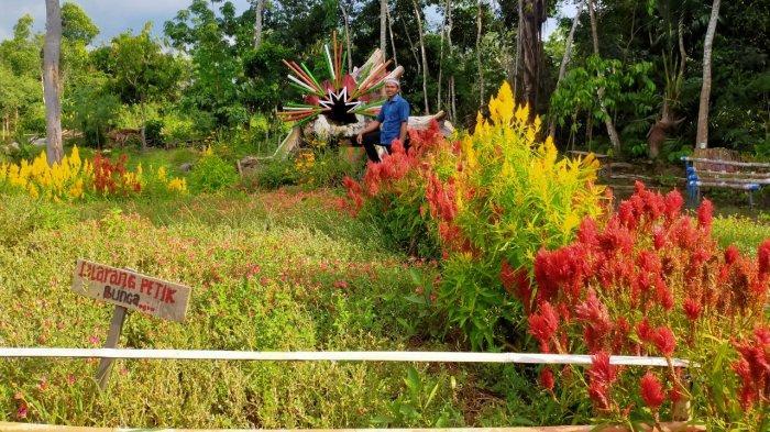 Taman Mekarsari Balangan Dirawat Berkala, Segera Ganti Tanaman Baru Kalau Rusak