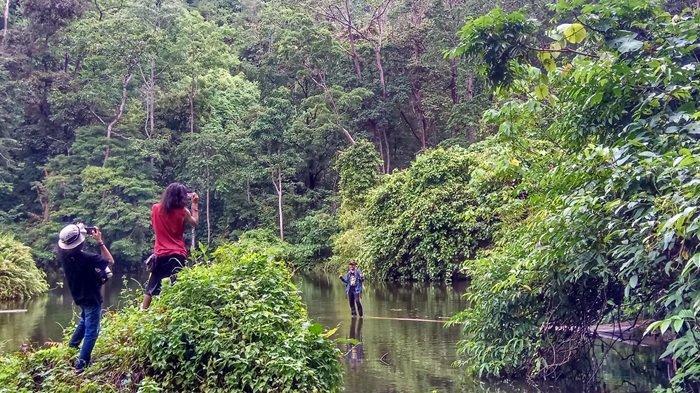 Telaga Pahiyangan Dalam dan Dingin, Begini Tips Berenang di Telaga di Puncak Gunung Pahiyangan