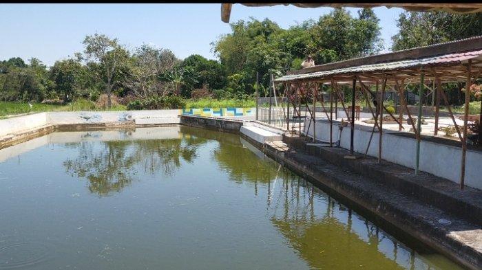Wisata Kalsel Kampung Purun di Palam Banjarbaru, Bersantai di Gazebo dan Kafe Nikmati Panorama Alam - wisata-kalsel-kampung-purun-kelurahan-palam-kecamatan-cempaka-kota-banjarbaru-04.jpg