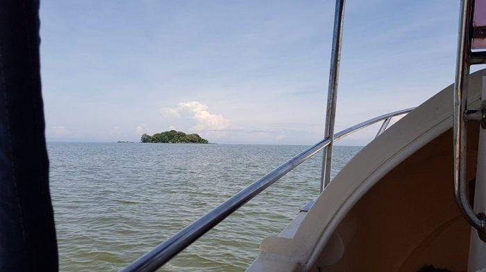 Wisata Kalsel Pulau Datu di Kabupaten Tanahlaut, Tempat Makam Ulama Besar Pengusir Penjajah - wisata-kalsel-pulau-datu-desa-tanjungdewa-kecamatan-panyipatan-kabupaten-tanahlaut-dari-kejauhan.jpg