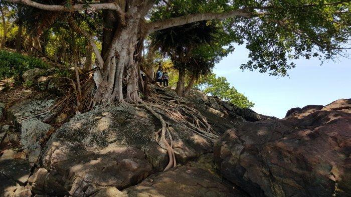 Wisata Kalsel Pulau Datu di Kabupaten Tanahlaut, Hanya Puluhan Menit Perjalanan dari Kota Pelaihari - wisata-kalsel-pulau-datu-di-kabupaten-tanahlaut-dengan-alam-pulau-yang-menawan-02.jpg