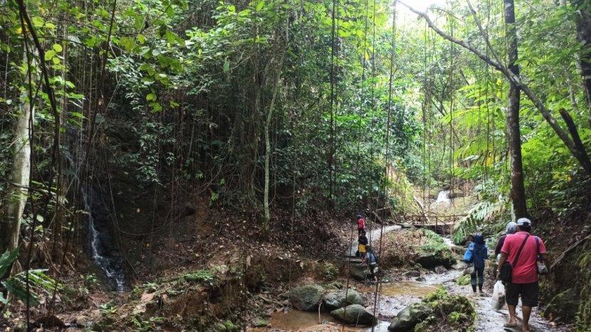 Berkunjung ke Air Terjun Lano di Tabalong, Wisatawan Harus Mendaki 600 Meter