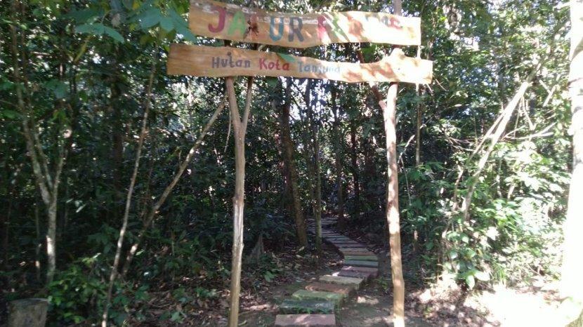 Ini yang Tersedia di Jalur Edukasi Hutan Kota Tanjung Persada