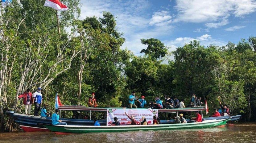 Pulau Kupang Kapuas Dipersiapkan Jadi Tempat Konservasi Bekantan
