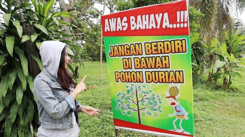 Memasuki Kebun Durian, Papan Berisi Larangan ini Sudah Terpampang untuk Perhatian Pengunjung