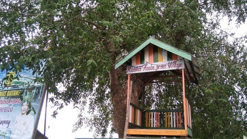 Pohon Rambai Jadi Ikon Kampung Hijau Sungai Bilu Banjarmasin, Asyik untuk Foto