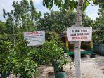 Bibit-tanaman-di-Kebun-Buah-Cipta-Rasa-Jalan-Manduhara-Palangkaraya-Kalteng.jpg