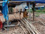 Kaum-ibu-mengupas-kulit-kayu-galam-di-Kampung-Pengayuan-Lianganggang-Banjarbaru.jpg