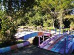 dony-usman-jembatan-warna-warni-di-hutan-kota-tanjung-persada.jpg