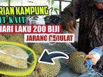 durian-kampung-kait-kait.jpg