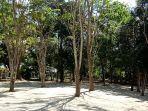 hutan-kota-pelaihari-didukung-areal-parkir-yang-luas-dan-teduh.jpg