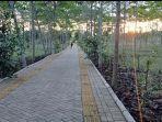 lingkungan-taman-hutan-hujan-tropis-di-area-lahan-perkantoran-pemprov-kalsel-di-kota-banjarbaru03.jpg