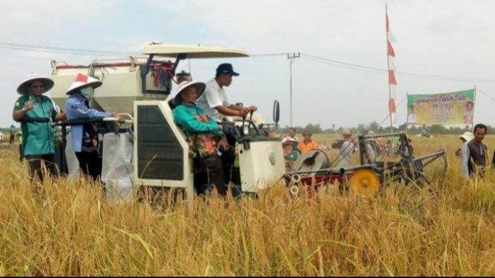 Nama-nama Desa Berawalan Kata Tatah di Kalimantan Selatan, Banyak Ditemukan di Kabupaten Banjar
