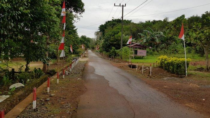 Lingkungan jalan permukiman di Desa Alur yang asri dan rapi.