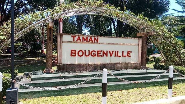 Selain Bandung dan Singkawang Kalsel Juga Miliki Taman Bougenville
