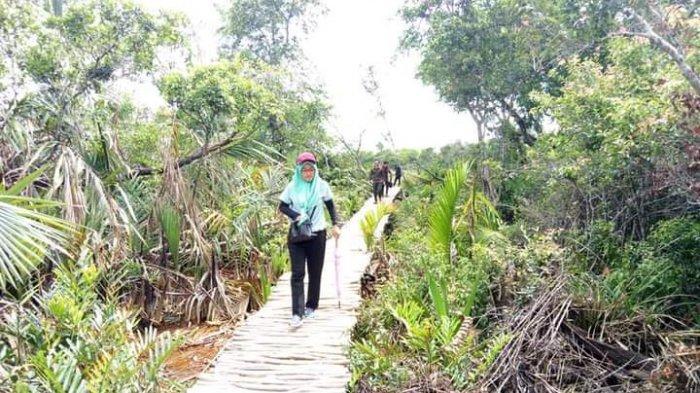 Wisata Kalsel, Desa Panjaratan di Kabupaten Tanahlaut, Turis Asing Susur Sungai Hutan Alam Bekantan - wisata-kalsel-eksotis-wisata-alam-hutan-panjaratan-di-kabupaten-tanahlaut-kalsel.jpg