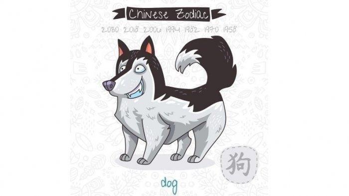 Ramalan Shio Anjing 14 Oktober 2021, Sulit Cari Jodoh dan Waspada dalam Mengambil Keputusan