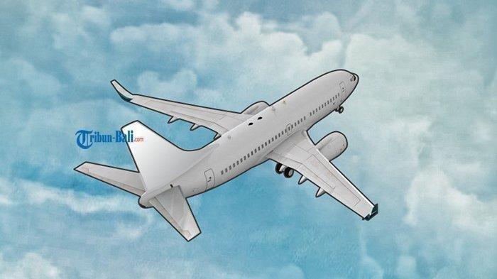 Lokasi Jatuh Pesawat Rimbun Air PK Dikuasai KKB Papua Pimpinan Zakius