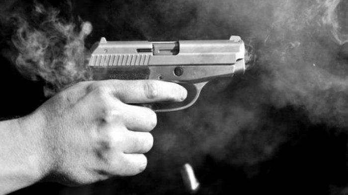 Dikira Babi, Pria di Sumut Tembakkan Senapan ke Arah Seorang Nenek, Terkejut Saat dengar Jeritan