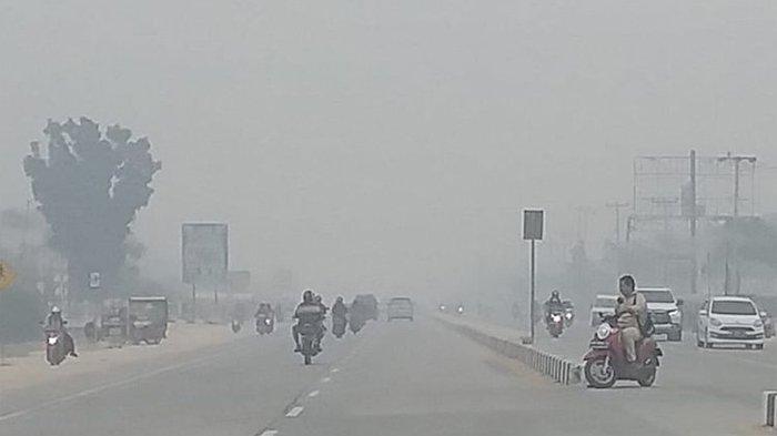 Calon Ibu Kota Baru Terdampak Kabut Asap, Begini Tanggapan Gubernur Kaltim