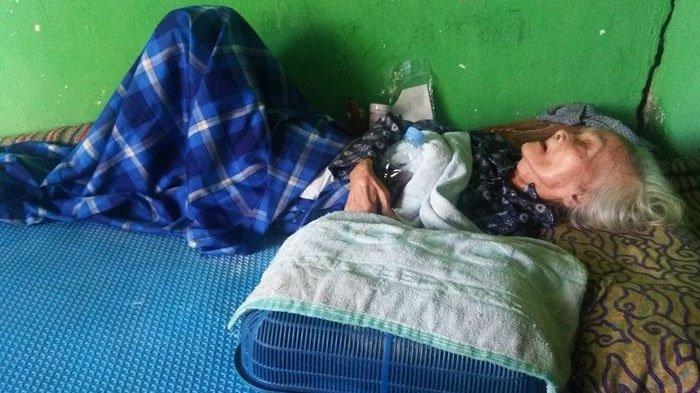Cerita Pilu Mbah Kasirah, Nenek Sebatangkara di Ngawi, Tak Dibantu Pemerintah karena Tak Punya E-KTP