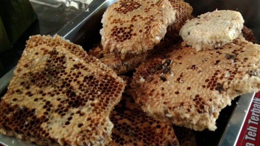 manfaat-sarang-lebah-atau-sarang-madu-atau-honeycomb.jpg