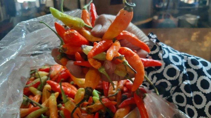 Harga Cabai Rawit Setan di Kabupaten Tegal Naik Rp10.000 Per Kilogram, Sekarang Jadi Segini