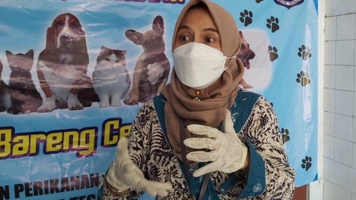 Pemilik Kucing dan Anjing Harus Tahu, Ini Tips agar Kucing dan Anjing Terhindar Rabies