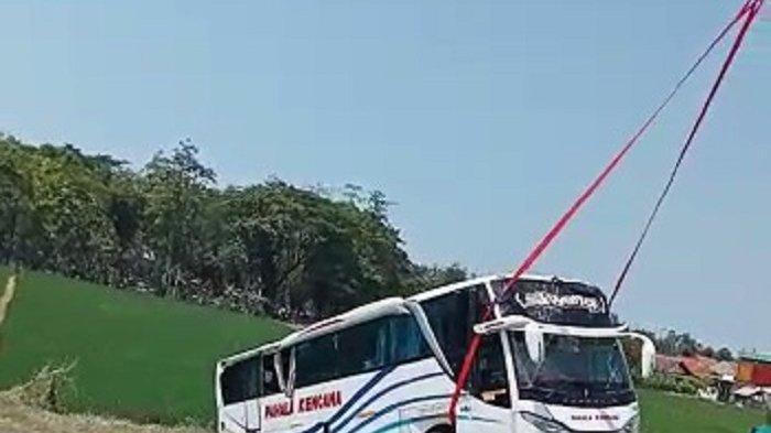 Video Diduga Sopir Mabuk, Bus Pahala Kencana Terguling di Tol Pemalang