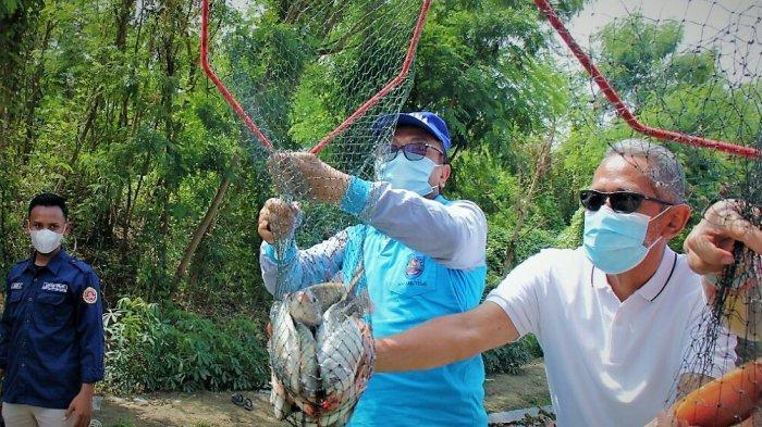 Karang Taruna Kabupaten Tegal Panen 300 Kilogram Ikan Nila