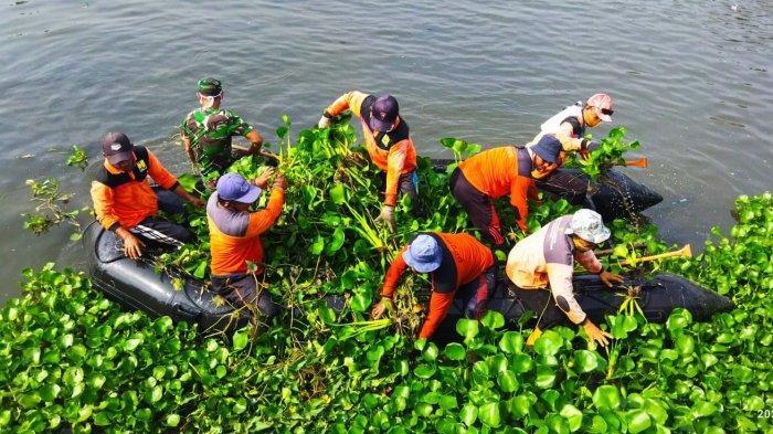 Bisa Gunakan Obat, Tim Gabungan Kendal Pilih Sisir Sungai Angkut Eceng Gondok, Ini Alasannya