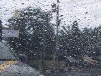 ilistrasi-prakiraan-cuaca-hujan-di-kota-tegal-november.jpg