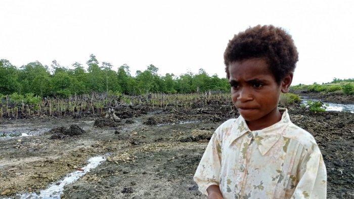 Kepala Kampung Maibo Minta Warga Tak Rusak Kawasan Mangrove: Demi Anak Cucu Kita ke Depannya
