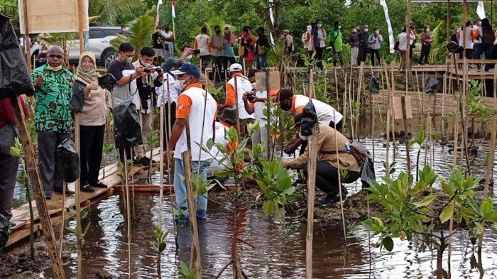 Sangat Strategis untuk Wisata Pendidikan, BRGM Minta Masyarakat Jaga Hutan Mangrove di Sorong
