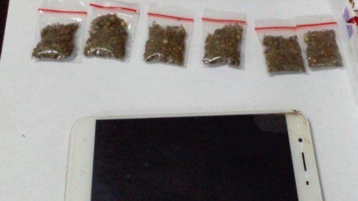 Polda Papua Barat Tangkap 4 Tersangka Kasus Narkoba Jenis Ganja