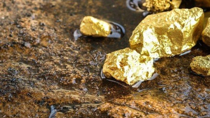 Wabup Pegunungan Bintang Papua Buka Suara soal Penambangan Emas Ilegal: Kita Belum Bisa Pastikan