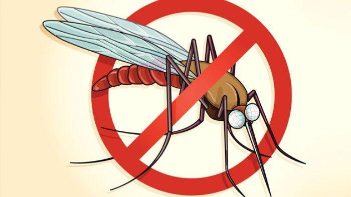 418 Kasus Malaria Ditemukan di Kota Sorong sejak Januari 2021, Tertinggi Ada di Puskesmas Doom