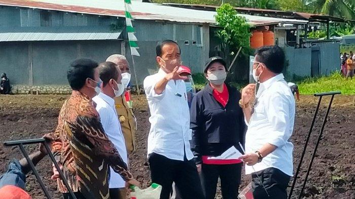 Genjot Produktivitas Pertanian, Pemerintah Latih 800 Petani Muda di Papua Barat