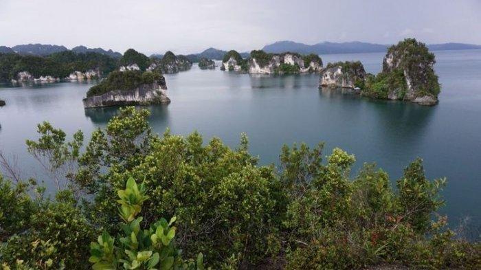 5 Wisata Alam di Papua Barat yang Mempesona, dari Raja Ampat hingga Pegunungan Arfak